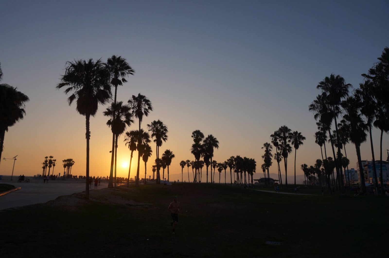 VENICE BEACH : CALIFORNIAN WAY OF LIFE