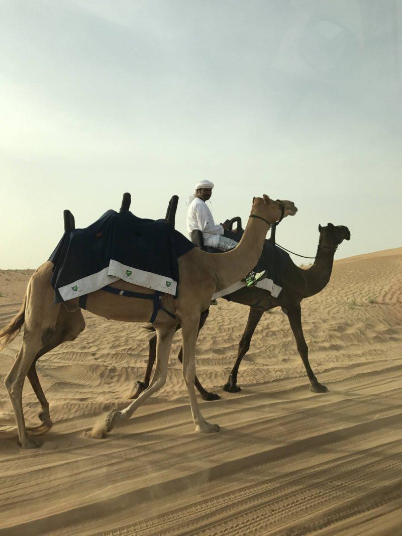 dubai-safari-desert