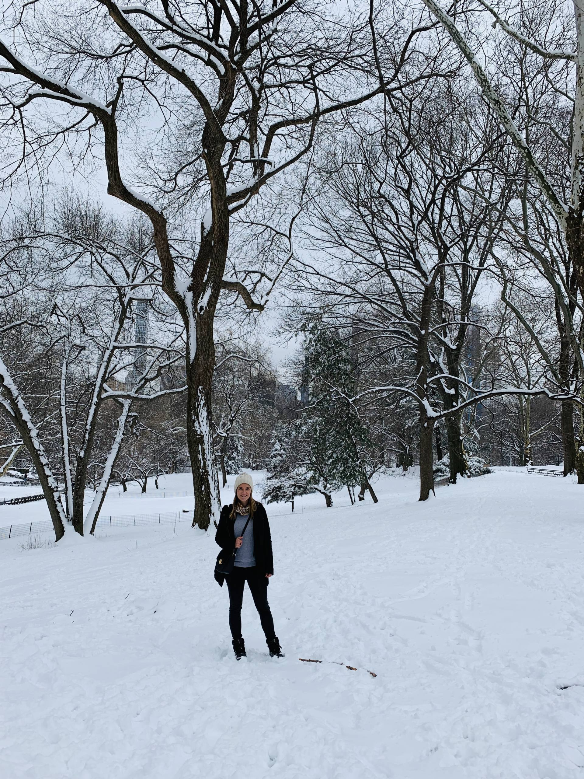 Central Park hiver New York